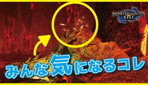 【モンハンライズ】モンスターの背中に赤い蝶?虫?遂に正体が判明!