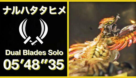 【モンハンライズ】ナルハタタヒメ  双剣ソロ  05′48″35/Thunder Serpent Narwa Dual Blades Solo