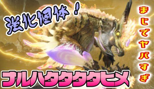 【モンハンライズ】強化個体ナルハタタヒメが強すぎて泣いた。ランスアンカーレイジで挑戦したぞ!【モンスターハンターライズ攻略】